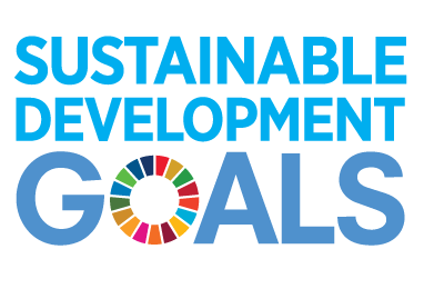 (Nederlands) SDG Spotlight Report