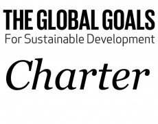 [NL] Vacature SDG Charter: junior project manager
